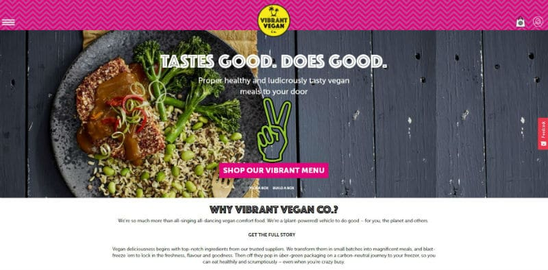 Vibrant Vegan Co plant based meal delivery