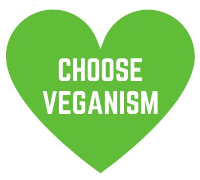 125 vegan quotes: Happy, inspiring, funny vegan quotes