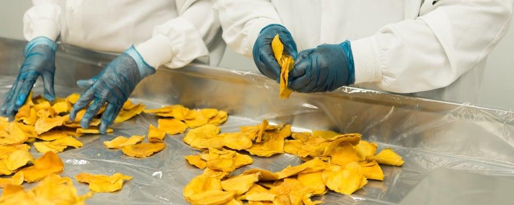 food factory cross contamination