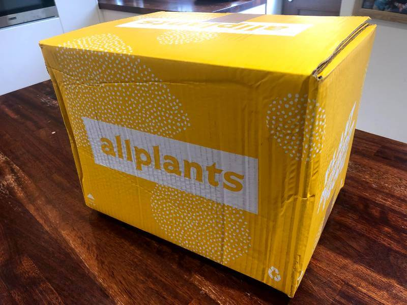 Allplant vegan food delivery